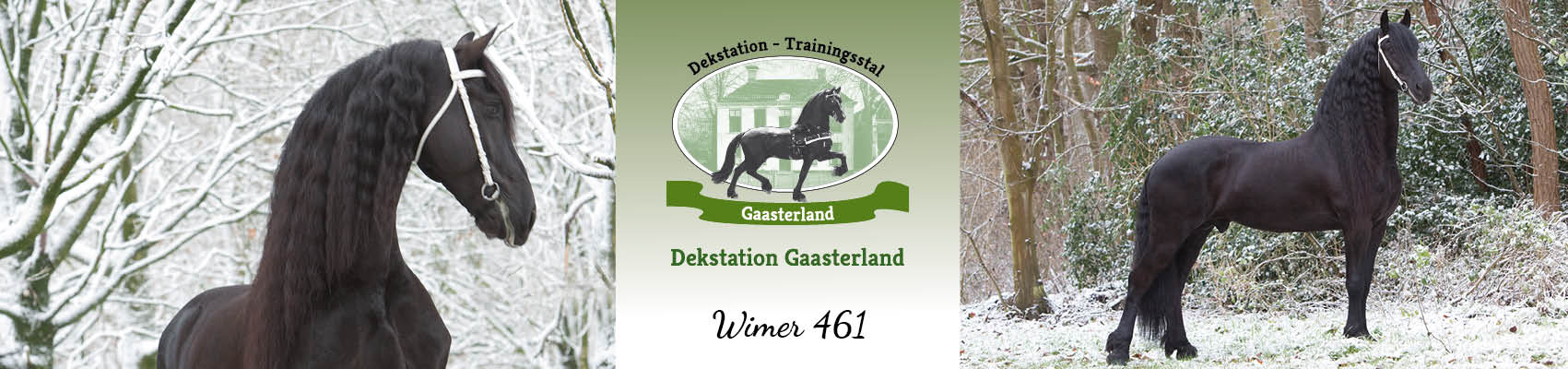 17.079_ Dekstationgaasterland_header-wimer