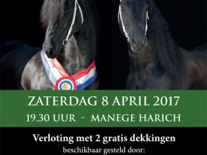 HENGSTENSHOW  08 APRIL MANEGE GAASTERLAND