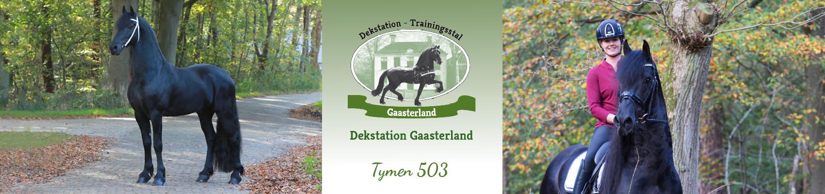 Header, Tymen 8-11-19